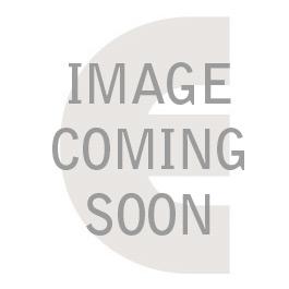 Silver Rose Jerusalem Glass and Metal Mezuzah Case, 5''